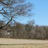 Princeton Battlefield, this place matters~